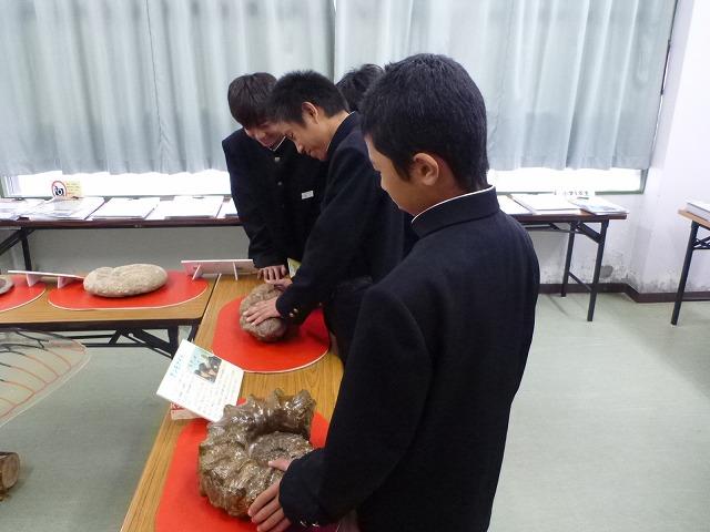 喜界島移動博物館:展示会場